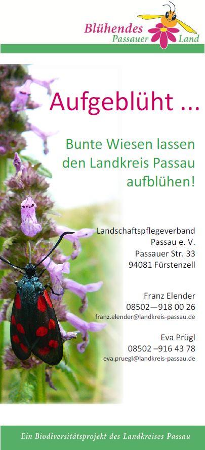 Flyer_Aufgeblüht_front