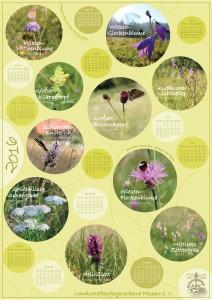 Kalender2016_printed_Rahmen